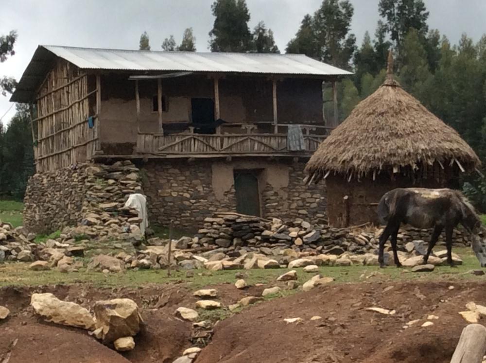Ethiopia--2 (4/6)