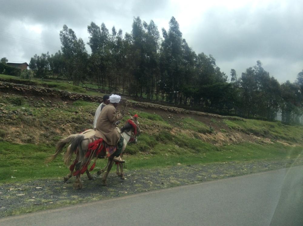 Ethiopia--2 (5/6)