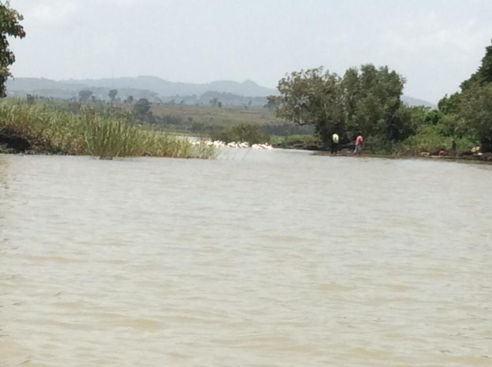 Ethiopia--Lake Tana and the Blue Nile (5/6)