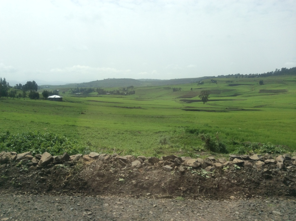 My Ethiopian Adventure--The Roof of Africa, Part One (2/6)
