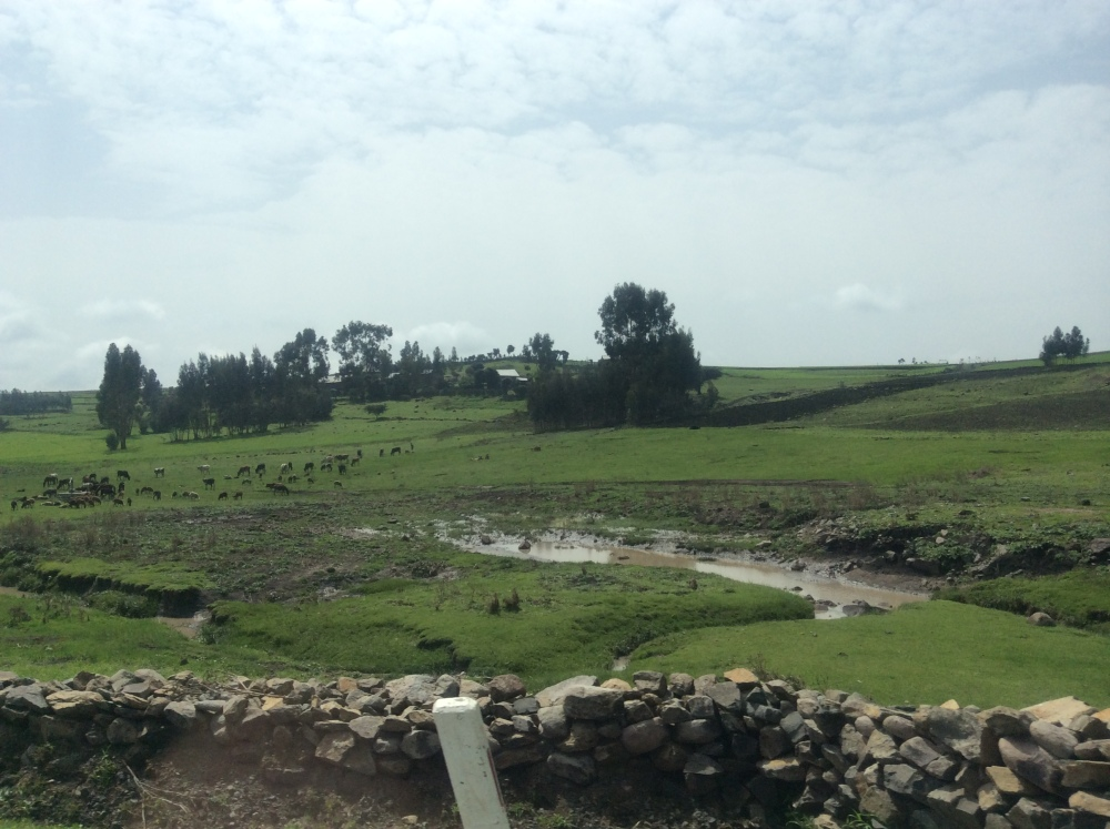 My Ethiopian Adventure--The Roof of Africa, Part One (3/6)