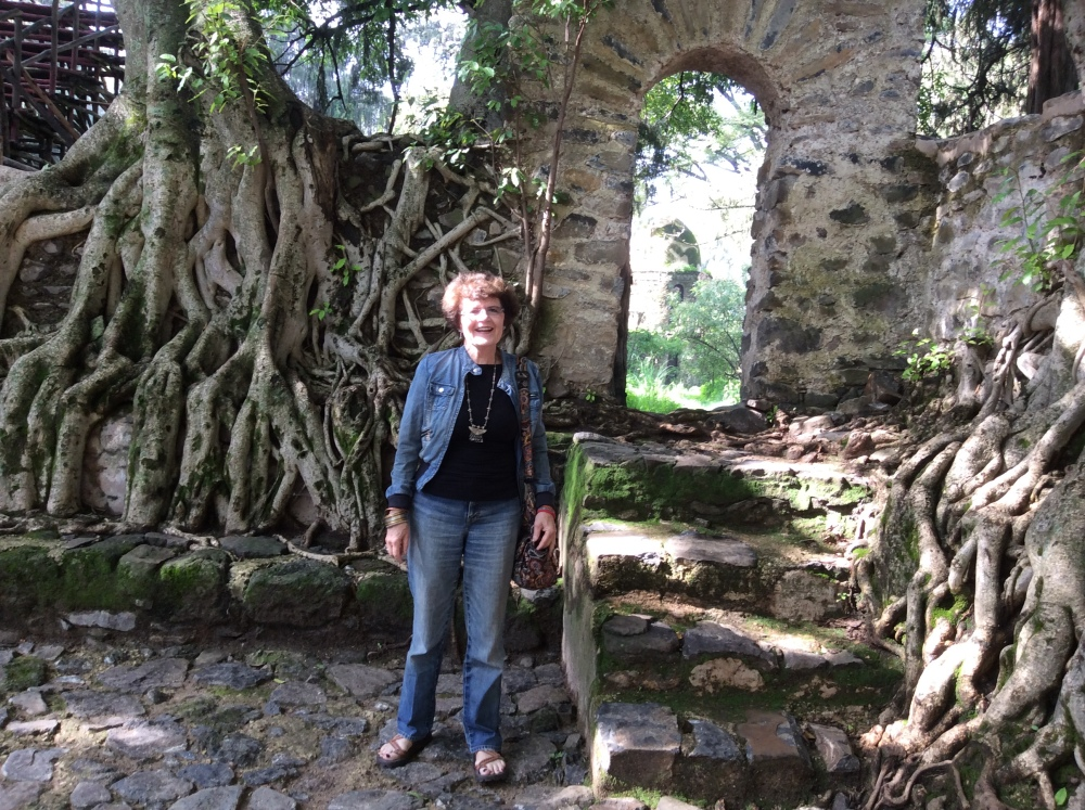My Ethiopian Adventure:  The Fasilades Bath Palace and the Church of Debre Birhan Selassie (4/6)