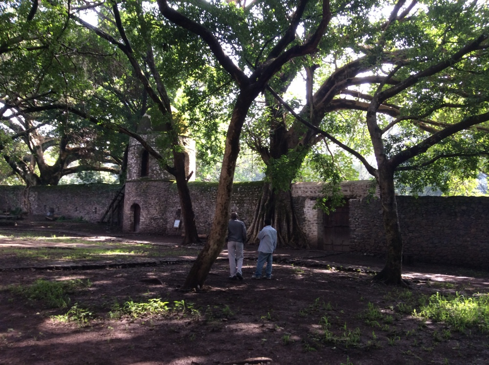 My Ethiopian Adventure:  The Fasilades Bath Palace and the Church of Debre Birhan Selassie (6/6)