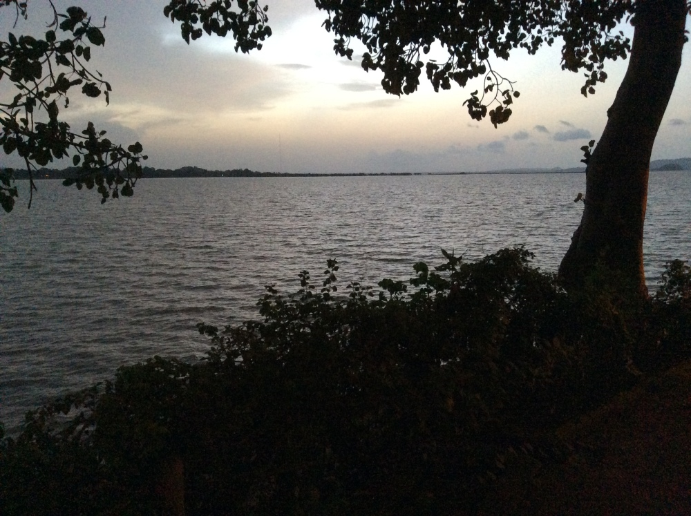 My Ethiopian Adventure:  Lake Tana, Where the Nile Begins--Part Two (1/6)