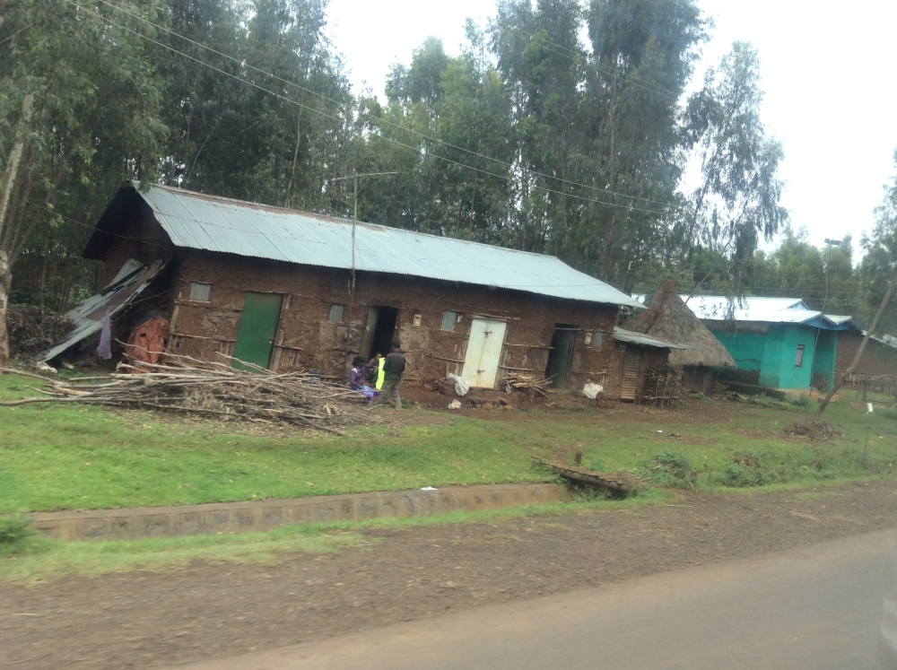 My Ethiopian Adventure:  On the Road from Bahir Dar to Debre Markos (4/6)